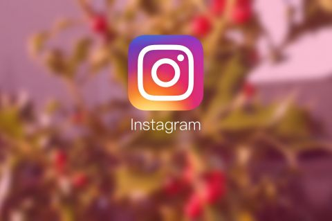 Improve Fan Following on Instagram